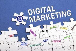 Digital Marketing Consultant/Services
