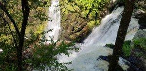 Waterfall for Falling SEO Rankings