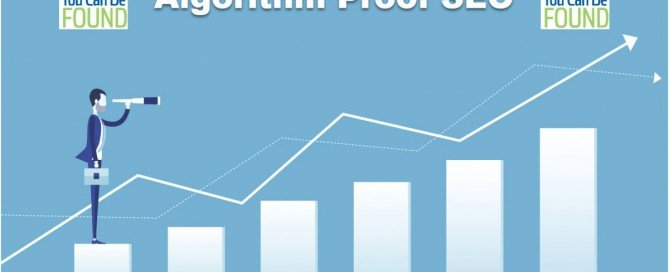 Algorithm Proof/Risk Free SEO