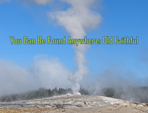 You Can Be Found Anywhere Old Faithful: Erupting Up the Rankings