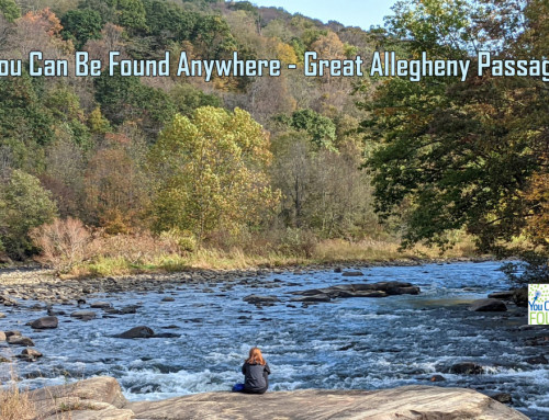 Great Allegheny Passage SEO- You Can Be Found Anywhere